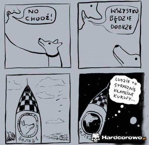 Pies w kosmosie - 1