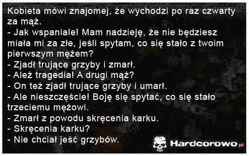 Grzyby - 1