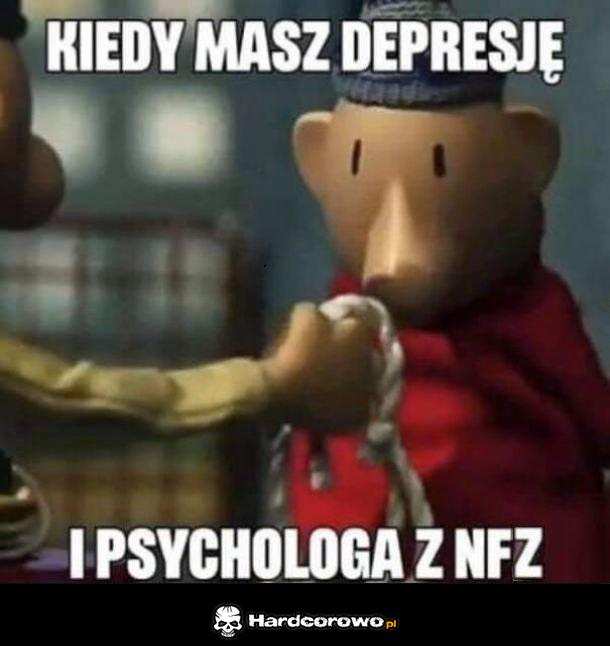 NFZ - 1