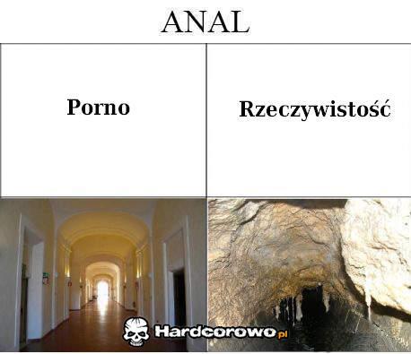 Anal - 1