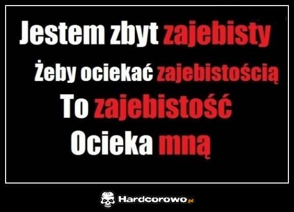 Zajebisty - 1