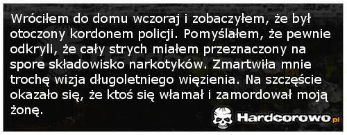 Policja w domu - 1