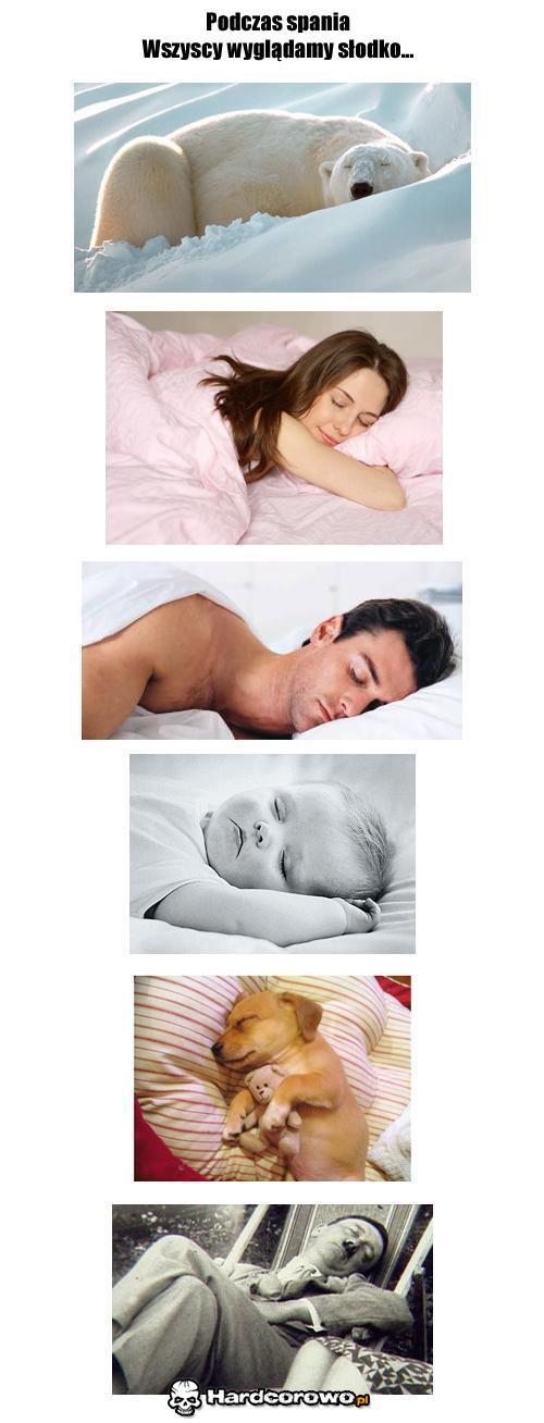 Podczas spania wszyscy wyglądamy słodko - 1