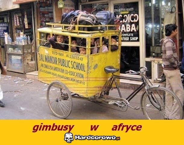 Gimbusy w Afryce - 1