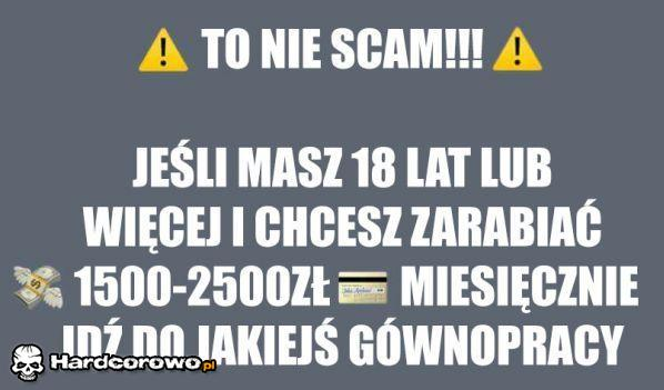 To nie scam! - 1