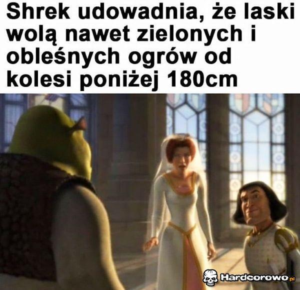 Shrek daje rade! - 1