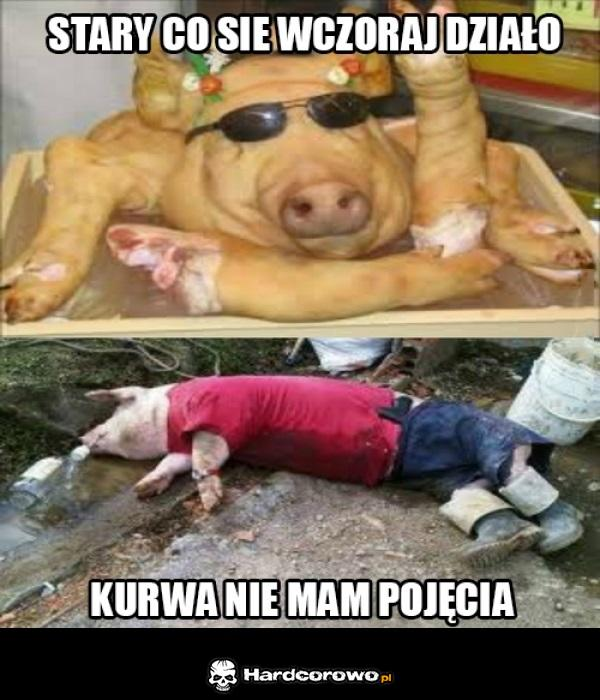 Świniaki - 1