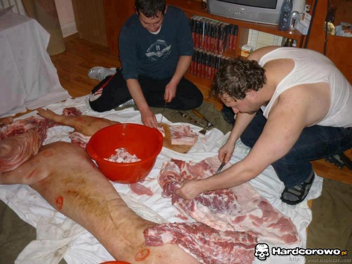 Rżniecie świniaka - 1