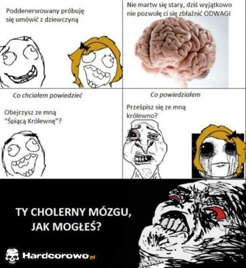 Cholerny mózg  - 1