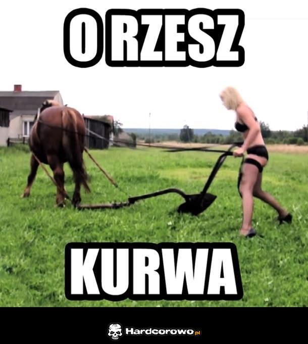 O Rzesz! - 1