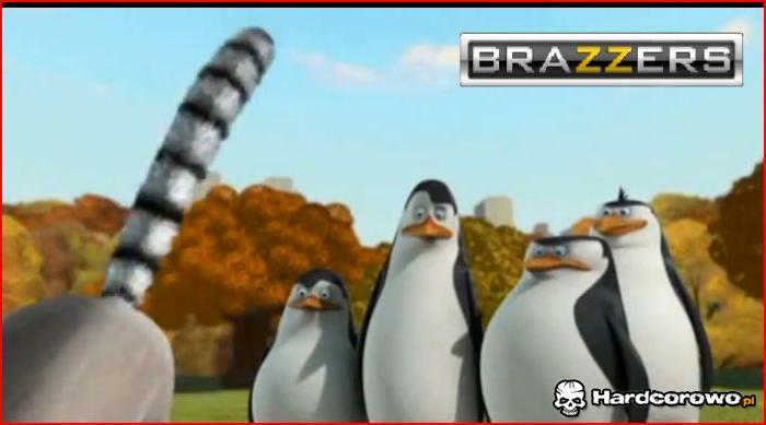 Pingwiny - 1