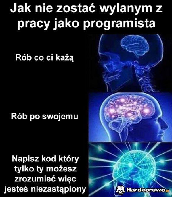 Programista - 1
