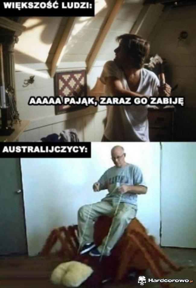 Większość ludzi vs Australijczycy - 1