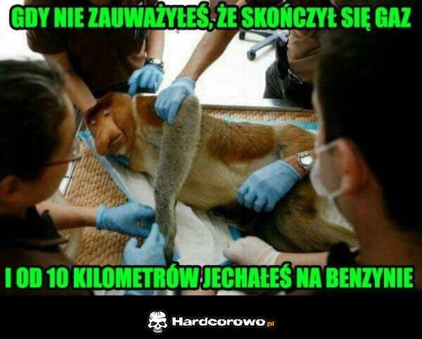 Janusz - 1