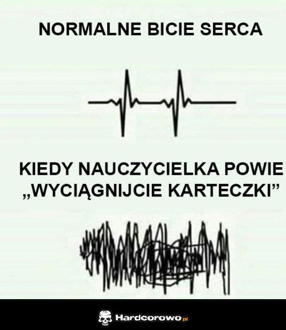 Rytm serca - 1