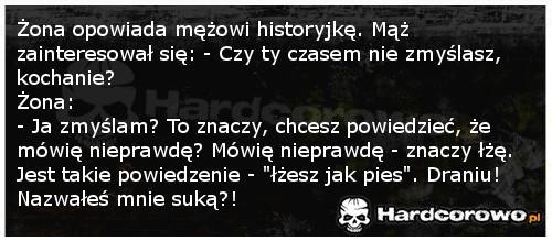 Historyjka żony - 1