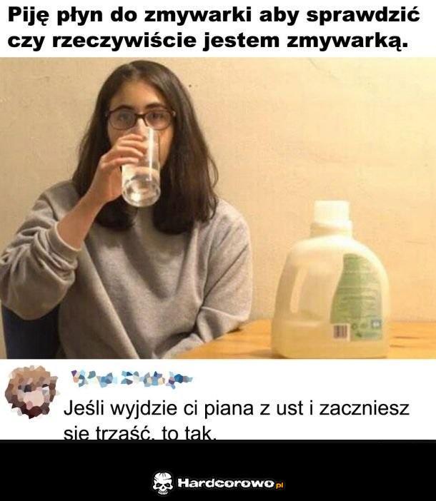Zmywarka - 1