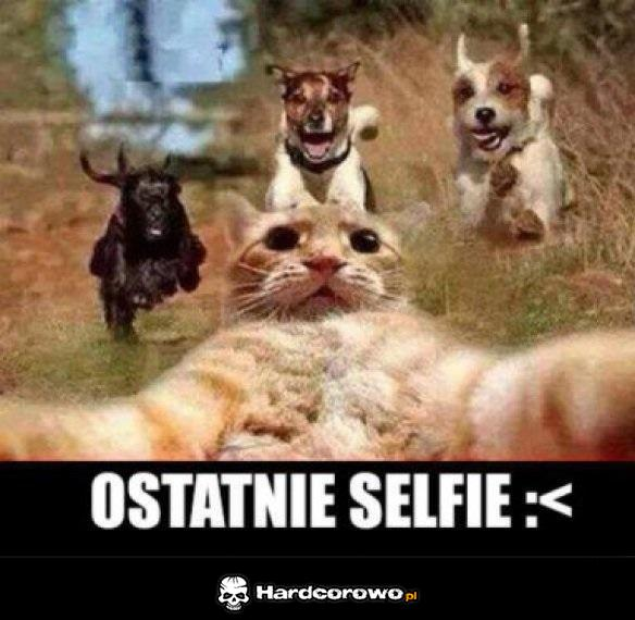 Ostatnie selfie - 1