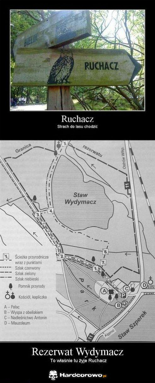 Ruchacz - 1