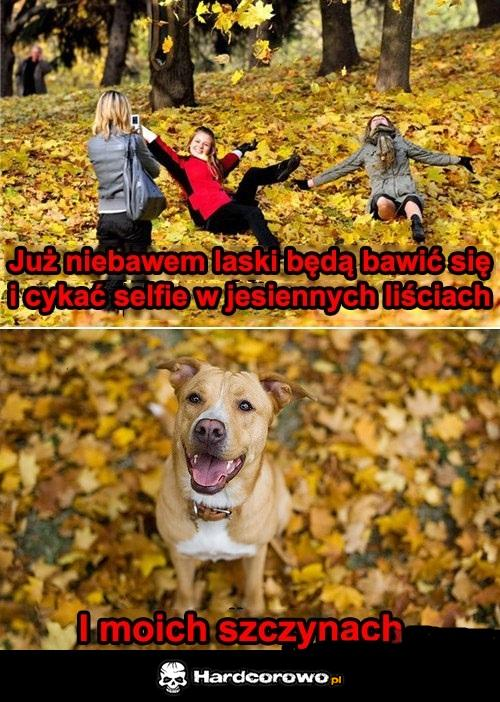 Jesień - 1
