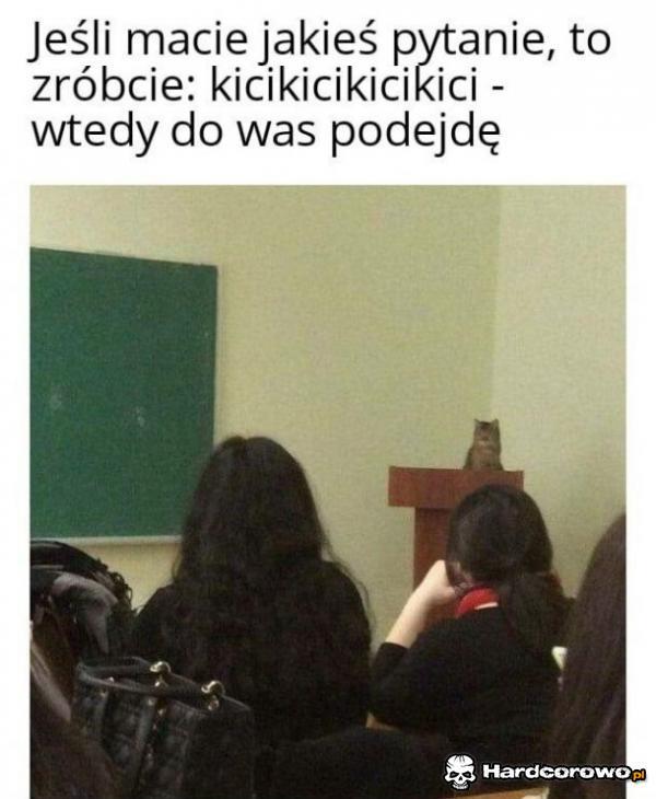 Kitku nauczyciel - 1