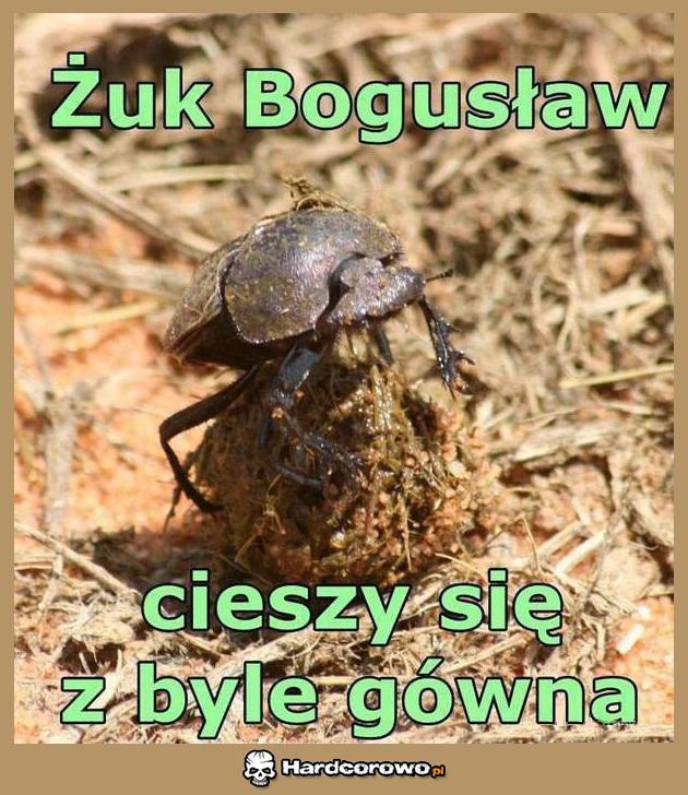 Żuk Bogusław - 1