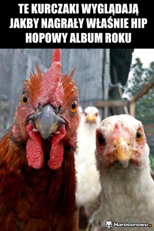 Gangsta kurczaki - 1