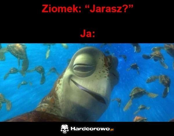 Jaranko - 1