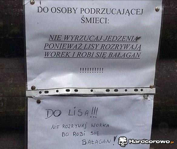 Strasznie ciekawski lis - 1