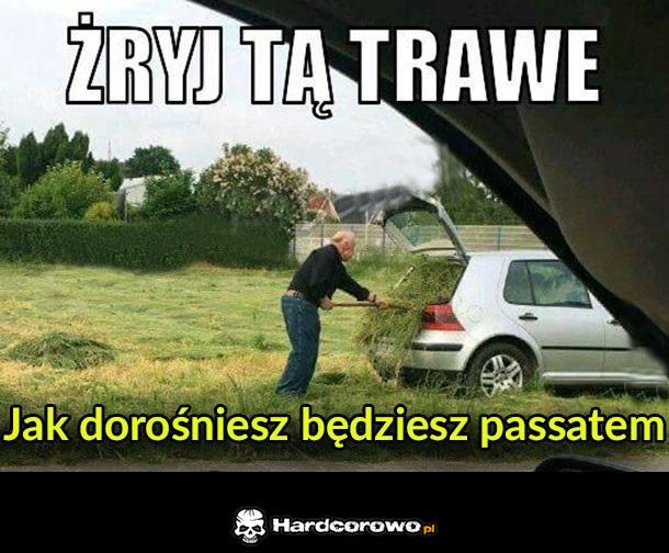 Żryj tą trawę - 1