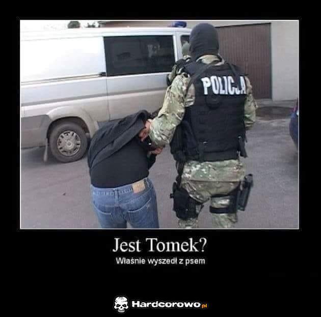 Tomek - 1