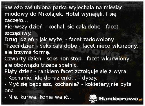 Świeżo zaślubiona parka - 1