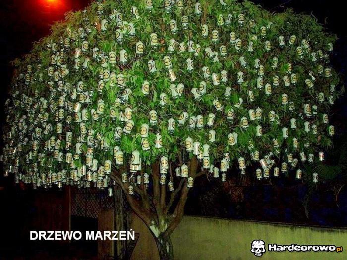 Drzewo marzeń - 1