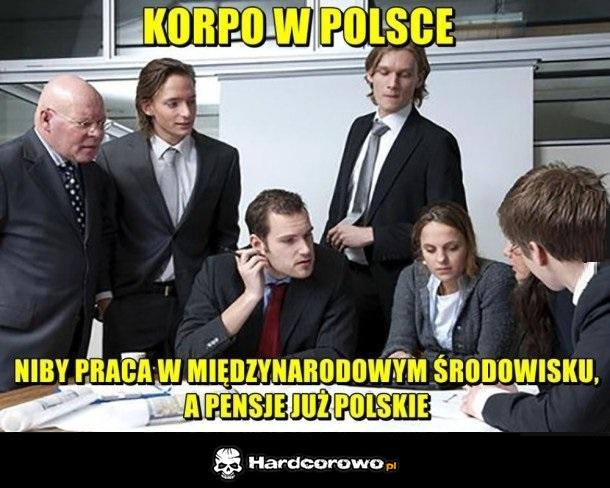 Polskie korpo - 1