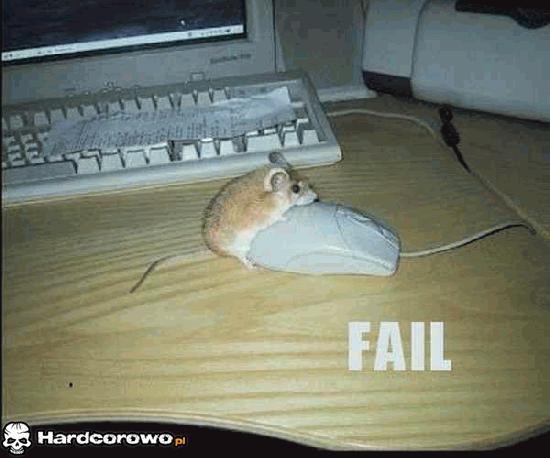 Myszka rucha myszkę - 1