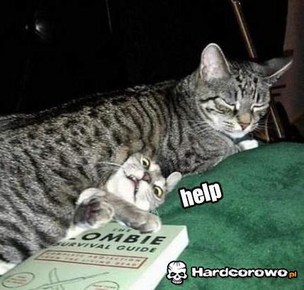 Pomocy! - 1