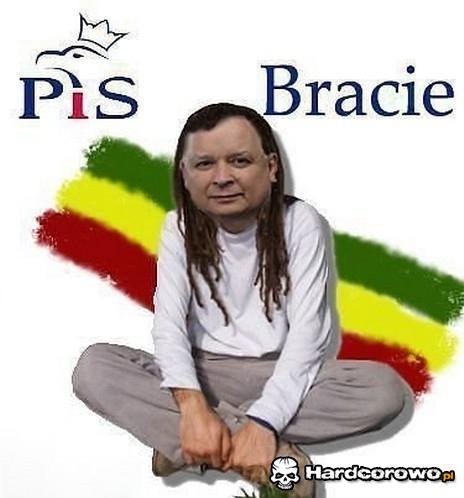 Bracie - 1