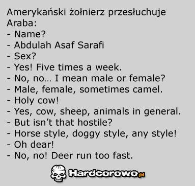 Przesłuchanie araba - 1