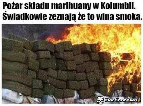 Pożar składu marihuany - 1