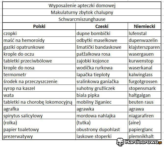 Słownik - 1