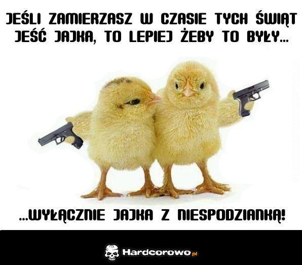 Groźne kurczaki  - 1