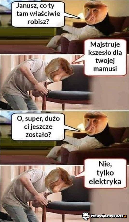 Janusz wpadł na pomysł - 1