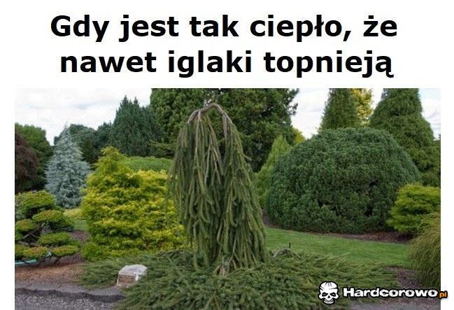Upały - 1
