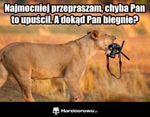 Uczynna lwica - 1