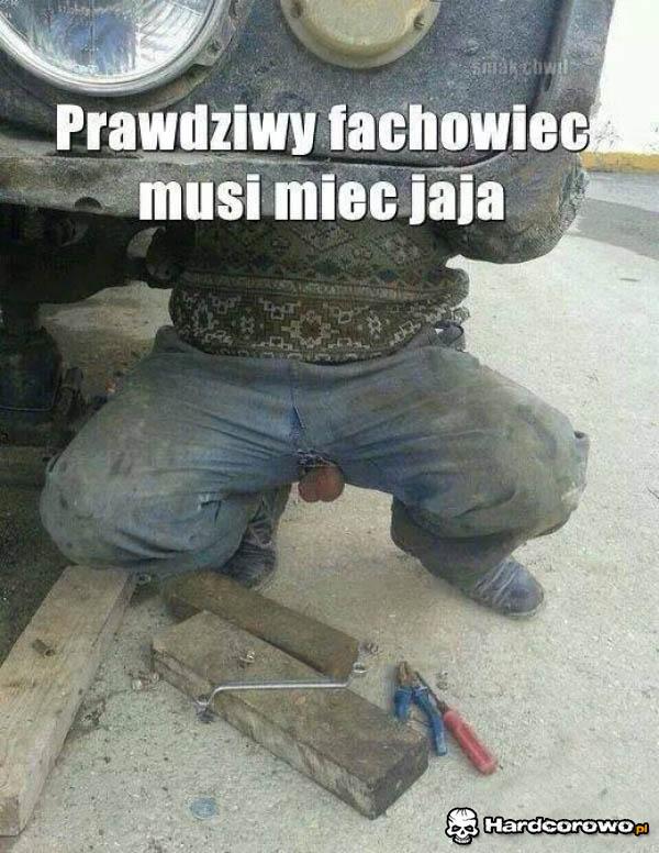 Janusz Fachowiec - 1