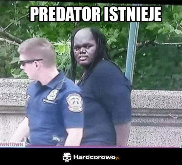 Predator - 1