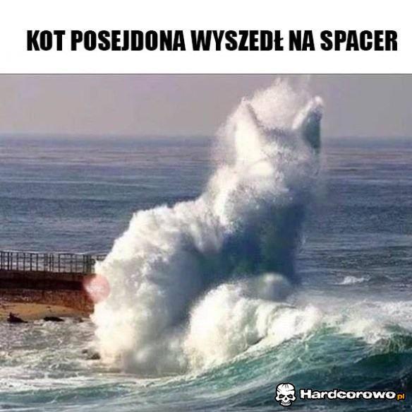 Kot Posejdona - 1