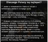 Dlaczego Polacy są najlepsi?