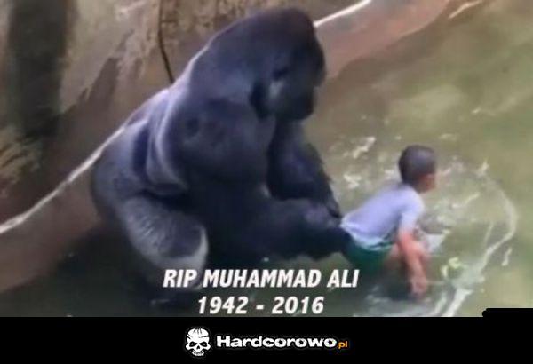 Muhammad Ali - 1
