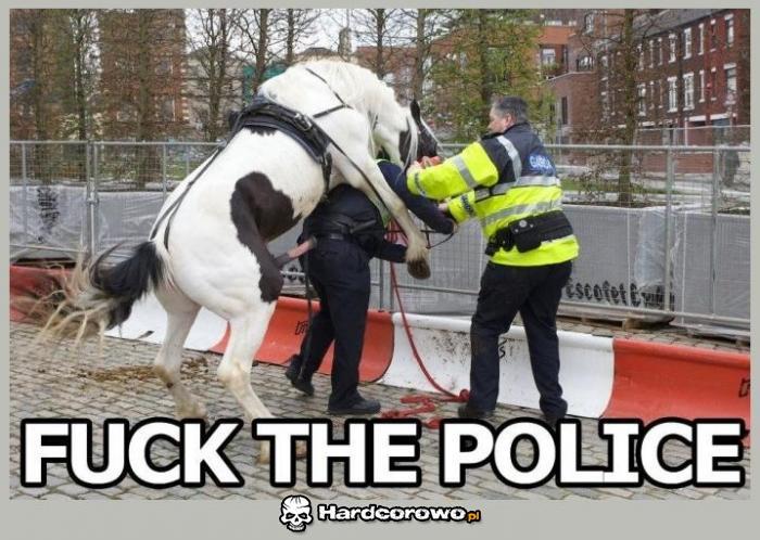 Policja - 1